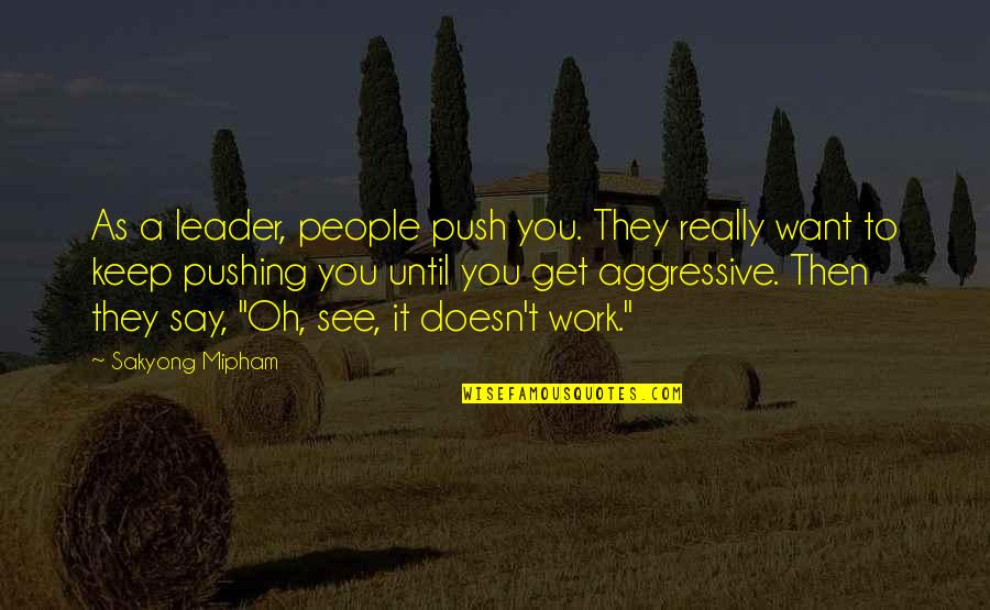 Want To See You Quotes By Sakyong Mipham: As a leader, people push you. They really