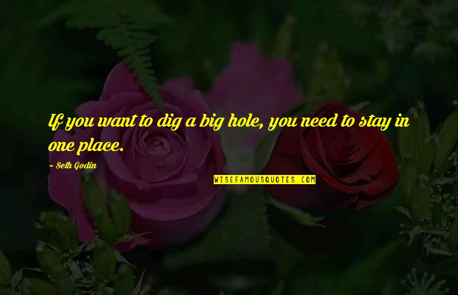 Want You To Stay Quotes By Seth Godin: If you want to dig a big hole,