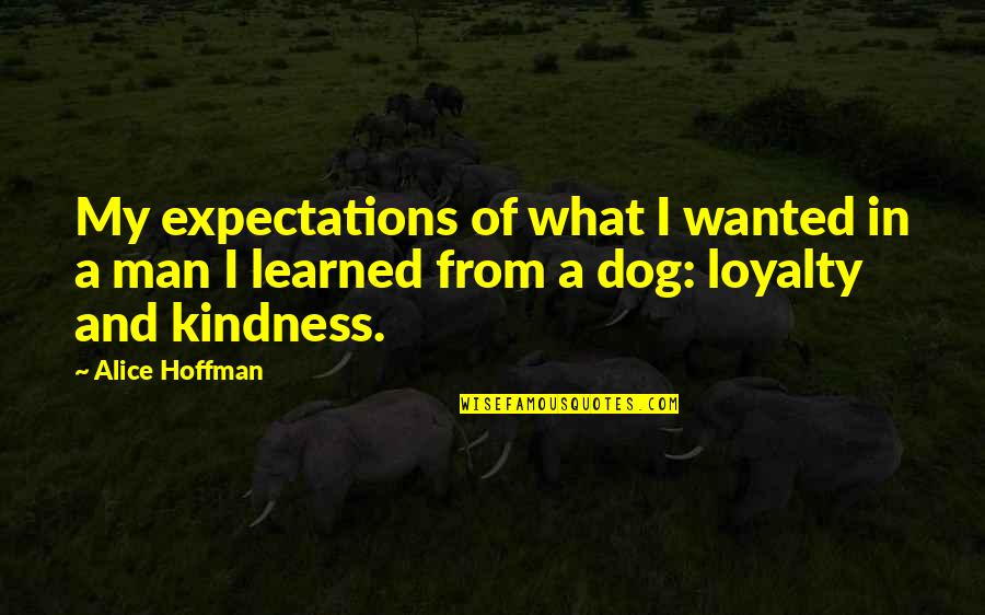 Wanted Man Quotes By Alice Hoffman: My expectations of what I wanted in a