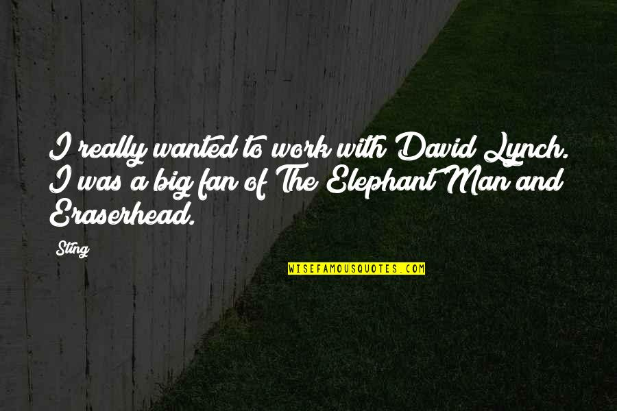 Wanted Man Quotes By Sting: I really wanted to work with David Lynch.