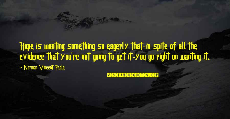 Wanting Something Quotes By Norman Vincent Peale: Hope is wanting something so eagerly that-in spite