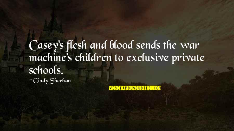 War And Soldiers Quotes By Cindy Sheehan: Casey's flesh and blood sends the war machine's