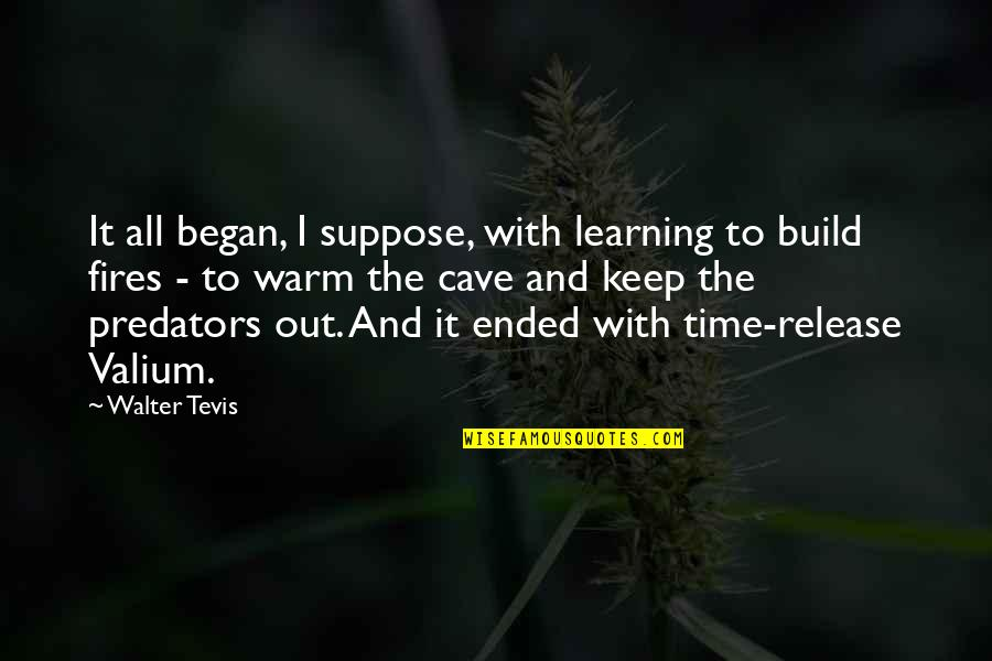 Warm Fires Quotes By Walter Tevis: It all began, I suppose, with learning to