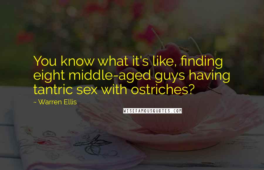 Warren Ellis quotes: You know what it's like, finding eight middle-aged guys having tantric sex with ostriches?