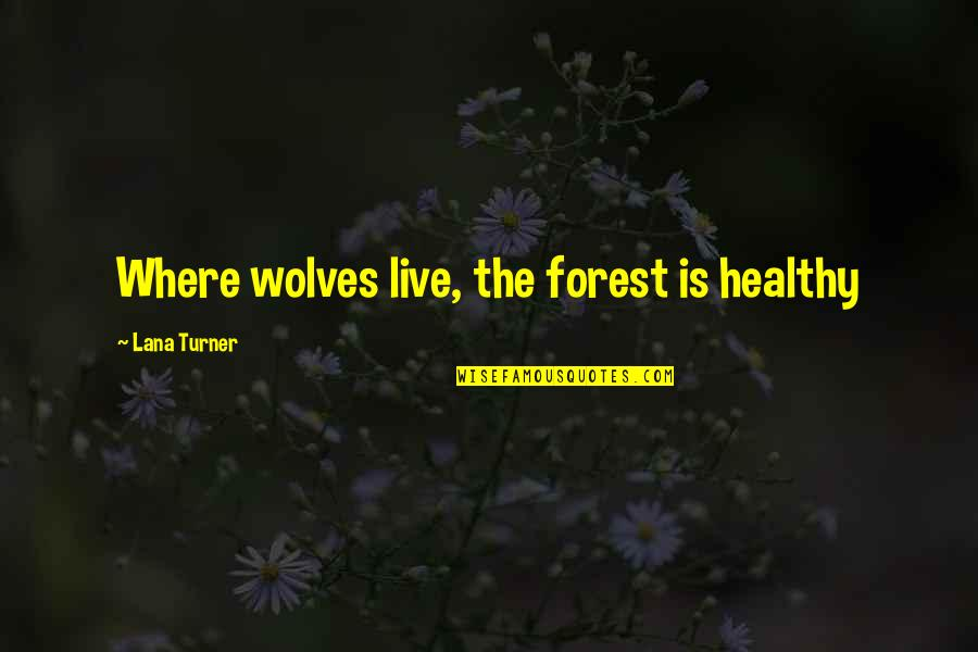 Washboard Quotes By Lana Turner: Where wolves live, the forest is healthy
