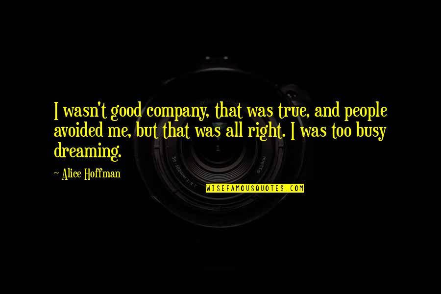 Wasn't Me Quotes By Alice Hoffman: I wasn't good company, that was true, and
