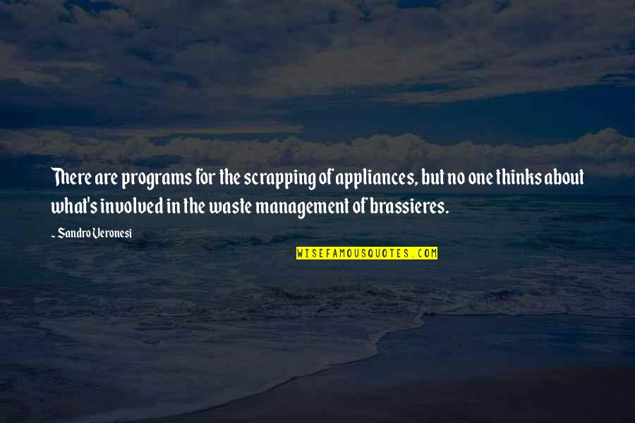 Waste Management Quotes By Sandro Veronesi: There are programs for the scrapping of appliances,