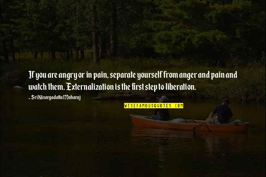 Watch Out For Yourself Quotes By Sri Nisargadatta Maharaj: If you are angry or in pain, separate