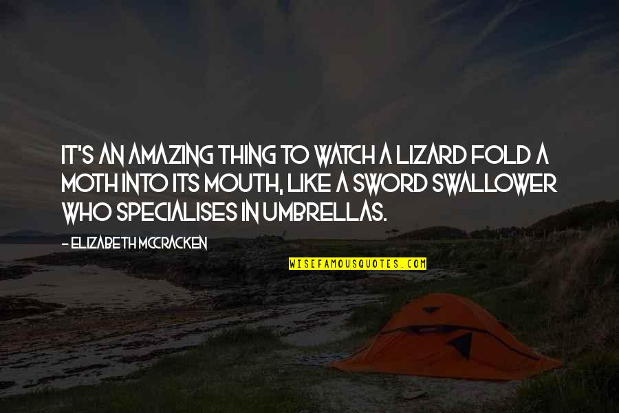 Watch Out Your Mouth Quotes By Elizabeth McCracken: It's an amazing thing to watch a lizard