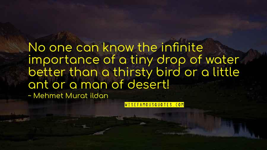 Water Importance Quotes By Mehmet Murat Ildan: No one can know the infinite importance of