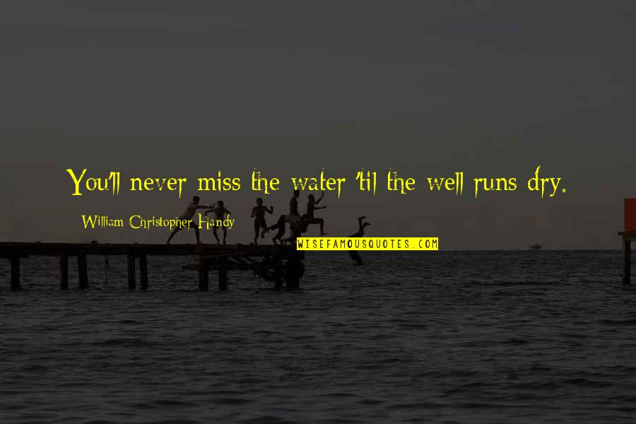 Water Runs Dry Quotes By William Christopher Handy: You'll never miss the water 'til the well