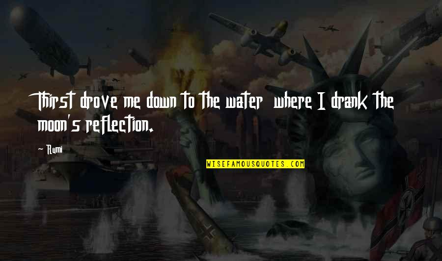 Water Thirst Quotes By Rumi: Thirst drove me down to the water where