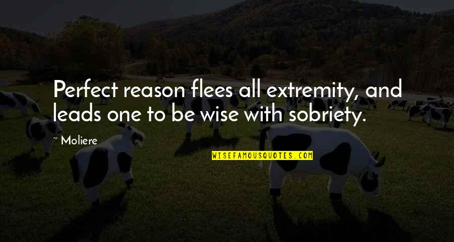 Waterboy Rob Schneider Quotes By Moliere: Perfect reason flees all extremity, and leads one