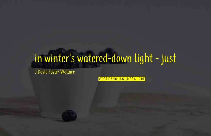 Watered Down Quotes By David Foster Wallace: in winter's watered-down light - just