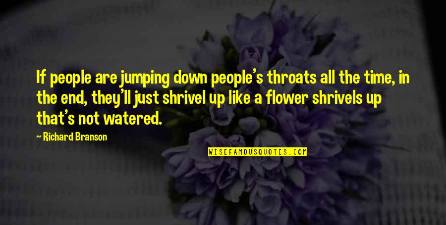 Watered Down Quotes By Richard Branson: If people are jumping down people's throats all