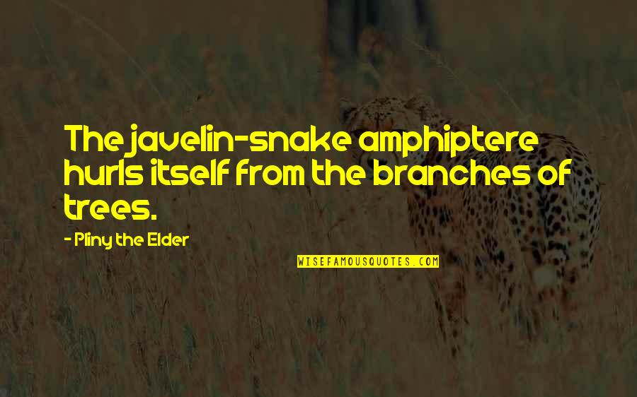 Wax Wings Quotes By Pliny The Elder: The javelin-snake amphiptere hurls itself from the branches