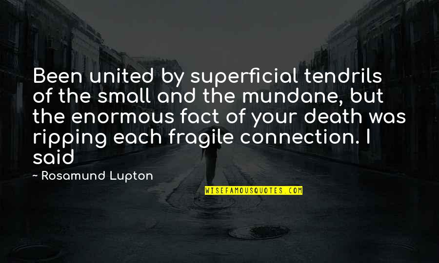 Wax Wings Quotes By Rosamund Lupton: Been united by superficial tendrils of the small