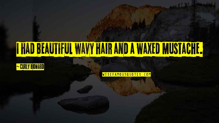 Waxed Quotes By Curly Howard: I had beautiful wavy hair and a waxed