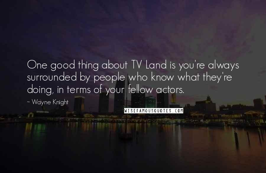 Wayne Knight quotes: One good thing about TV Land is you're always surrounded by people who know what they're doing, in terms of your fellow actors.