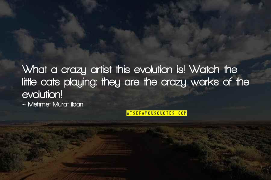 We Are All A Little Crazy Quotes By Mehmet Murat Ildan: What a crazy artist this evolution is! Watch