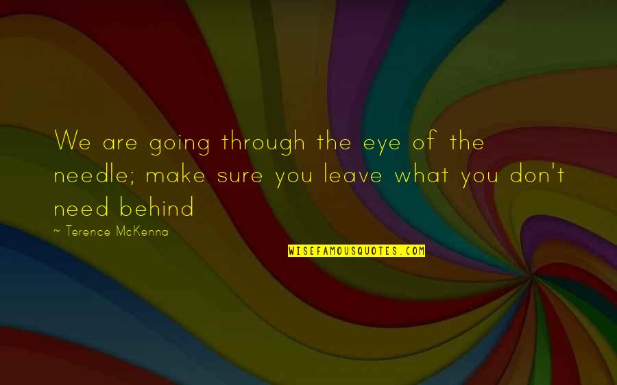 We Are Behind You Quotes By Terence McKenna: We are going through the eye of the