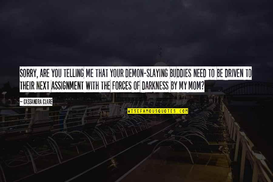 We Are Best Buddies Quotes By Cassandra Clare: Sorry, are you telling me that your demon-slaying