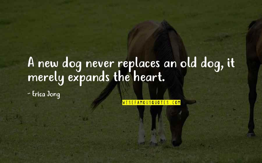 We Are Never Too Old Quotes By Erica Jong: A new dog never replaces an old dog,