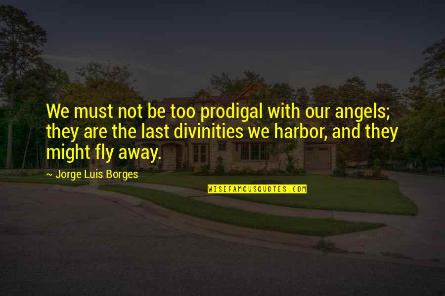 We Are Not Angels Quotes By Jorge Luis Borges: We must not be too prodigal with our
