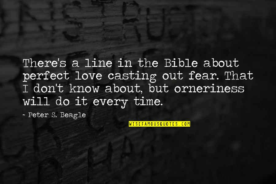We Are Not Perfect Bible Quotes By Peter S. Beagle: There's a line in the Bible about perfect