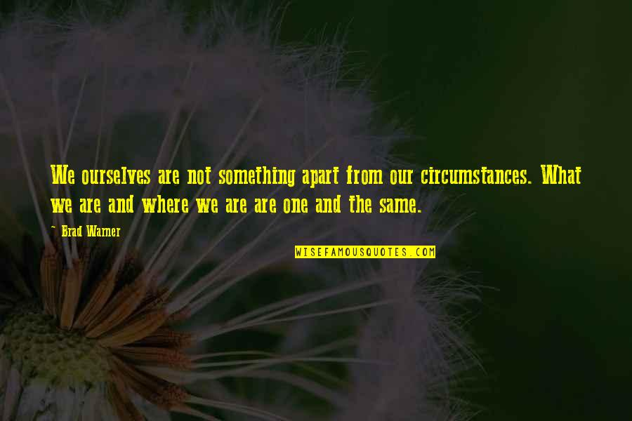 We Are The Same Quotes By Brad Warner: We ourselves are not something apart from our
