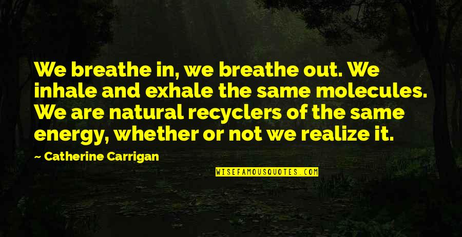 We Are The Same Quotes By Catherine Carrigan: We breathe in, we breathe out. We inhale