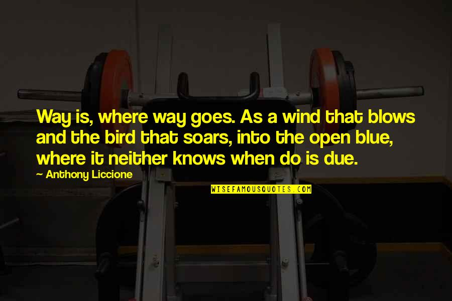 We Argue Alot Quotes By Anthony Liccione: Way is, where way goes. As a wind