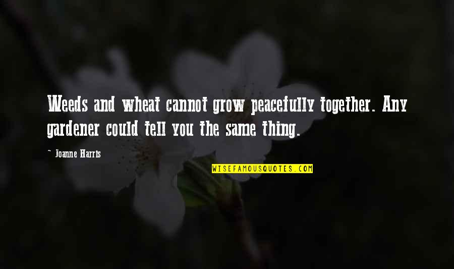 We Grow Up Together Quotes By Joanne Harris: Weeds and wheat cannot grow peacefully together. Any