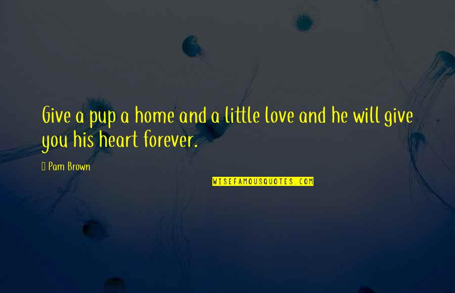 We Heart It Home Quotes By Pam Brown: Give a pup a home and a little