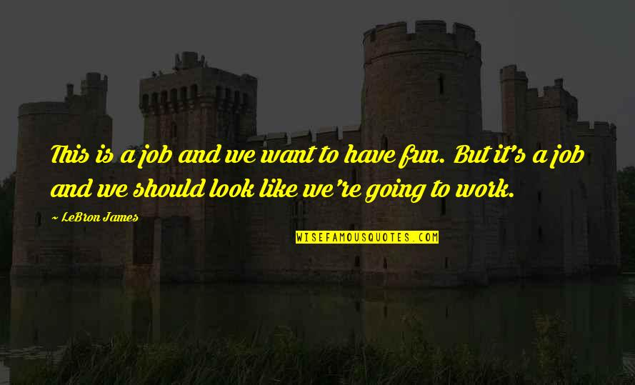 We Like To Have Fun Quotes By LeBron James: This is a job and we want to