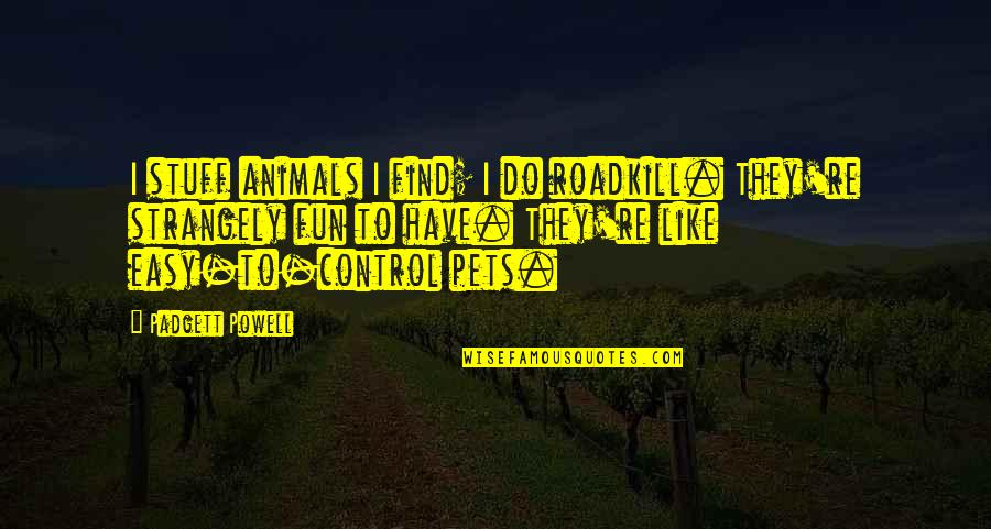 We Like To Have Fun Quotes By Padgett Powell: I stuff animals I find; I do roadkill.