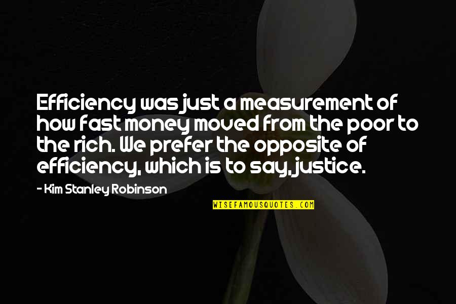 We Moved Quotes By Kim Stanley Robinson: Efficiency was just a measurement of how fast