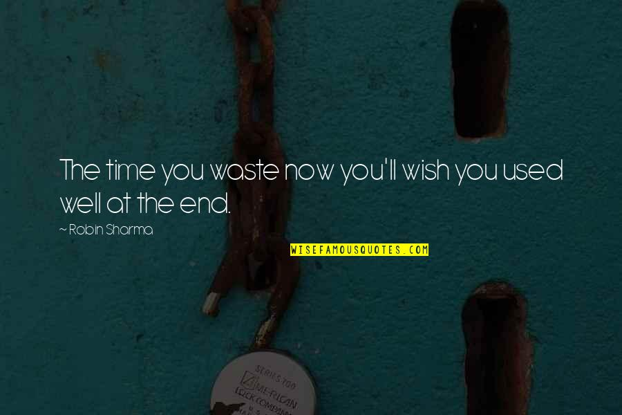We Wish You Well Quotes By Robin Sharma: The time you waste now you'll wish you