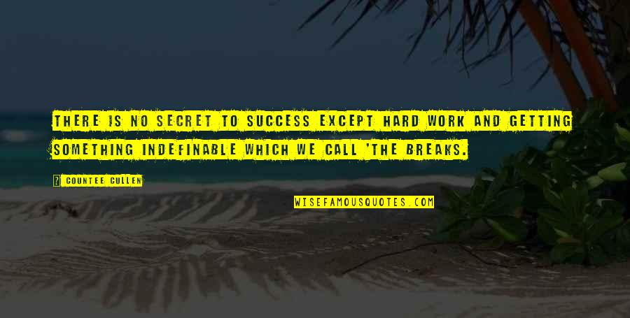 We Work Hard Quotes By Countee Cullen: There is no secret to success except hard