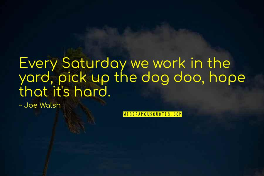 We Work Hard Quotes By Joe Walsh: Every Saturday we work in the yard, pick