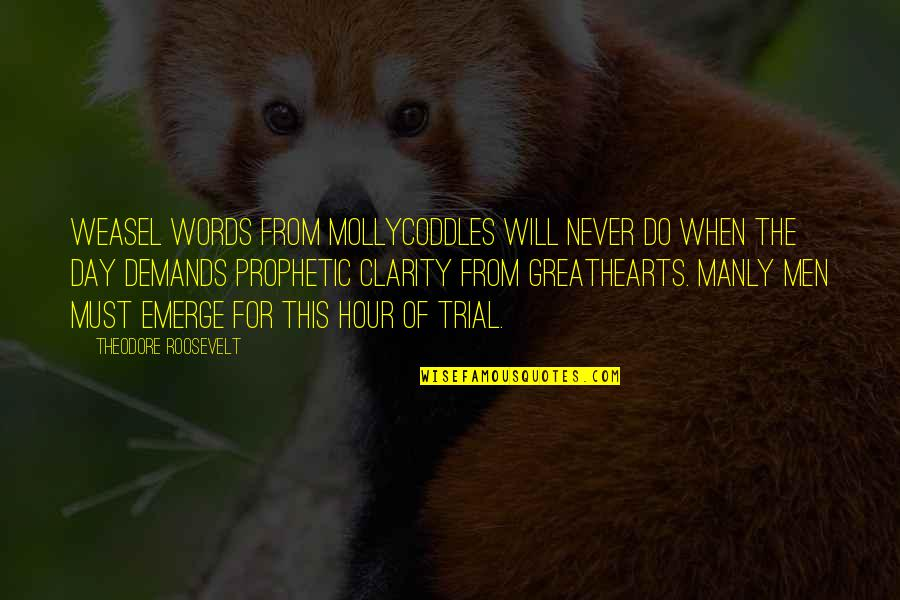 Weasel Quotes By Theodore Roosevelt: Weasel words from mollycoddles will never do when