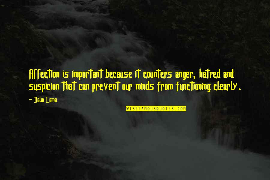 Webpagina Quotes By Dalai Lama: Affection is important because it counters anger, hatred