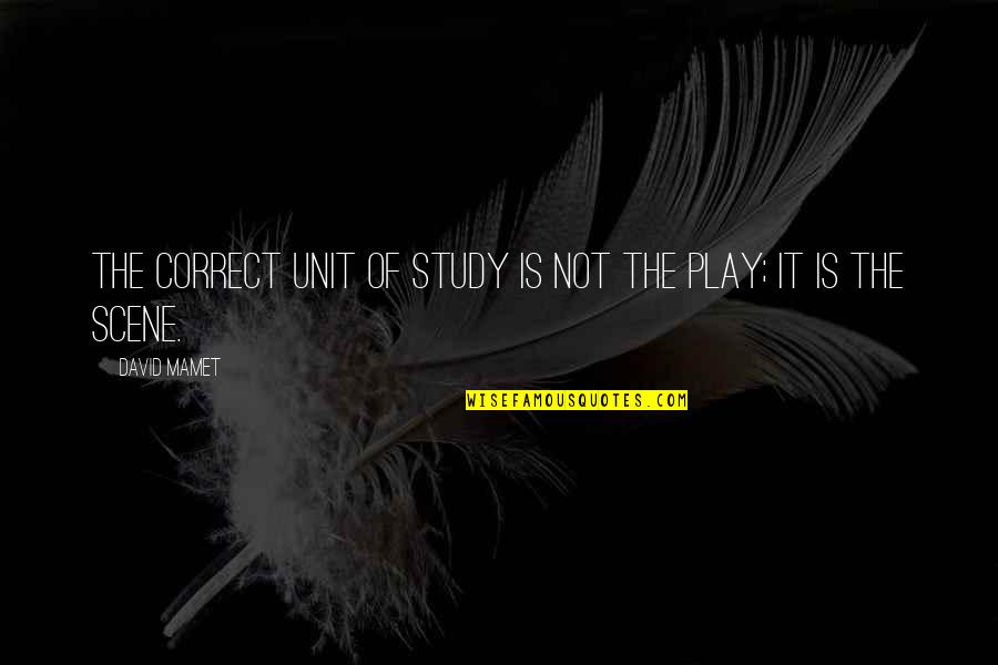 Wedding Anniversary Invitation Quotes By David Mamet: The correct unit of study is not the