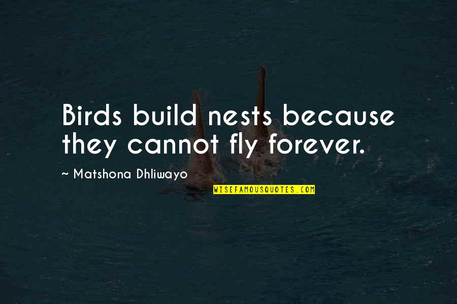 Wedding Love Quotes By Matshona Dhliwayo: Birds build nests because they cannot fly forever.