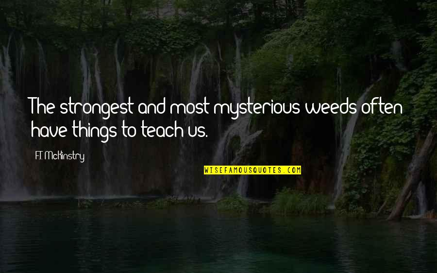 Weeds Quotes By F.T. McKinstry: The strongest and most mysterious weeds often have