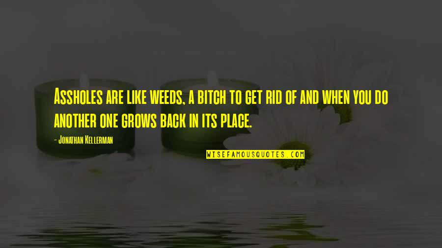 Weeds Quotes By Jonathan Kellerman: Assholes are like weeds, a bitch to get