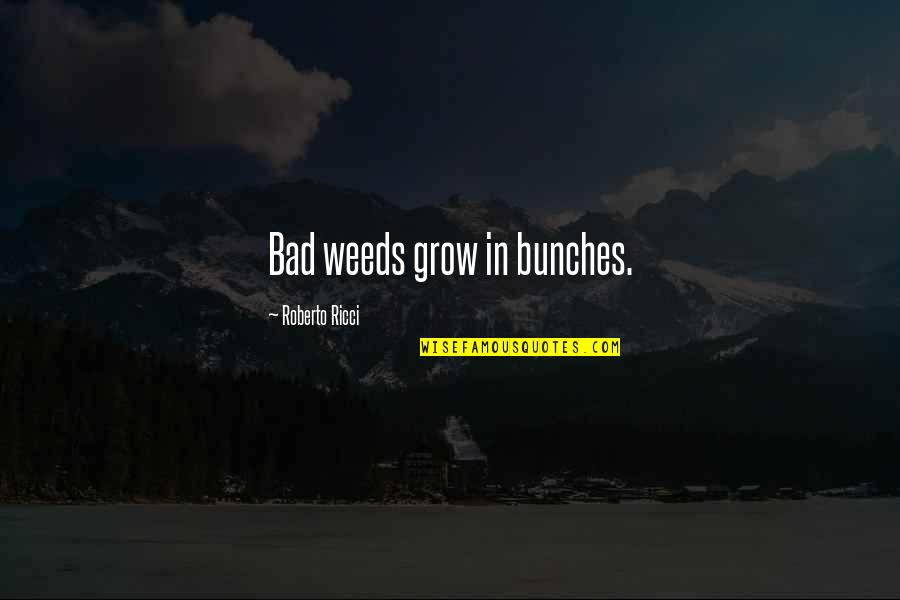 Weeds Quotes By Roberto Ricci: Bad weeds grow in bunches.