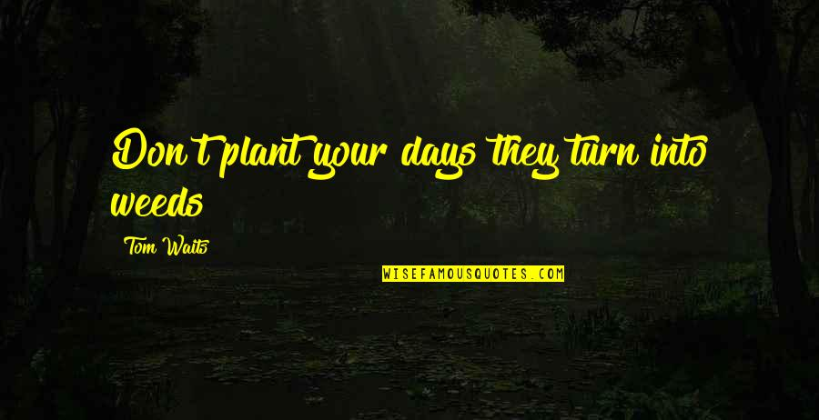 Weeds Quotes By Tom Waits: Don't plant your days they turn into weeds
