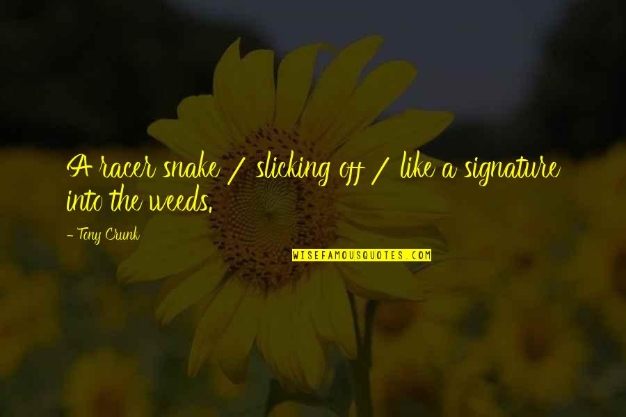 Weeds Quotes By Tony Crunk: A racer snake / slicking off / like