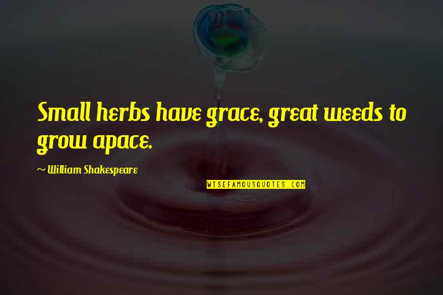 Weeds Quotes By William Shakespeare: Small herbs have grace, great weeds to grow
